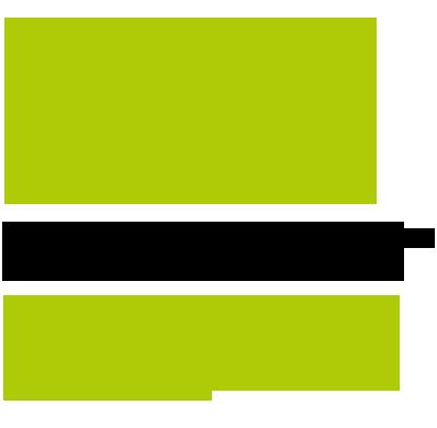 palmas_img